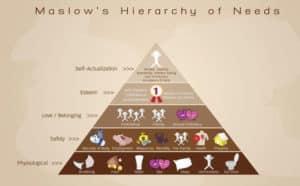 s'accomplir pour reussir avec la pyramide de Maslow